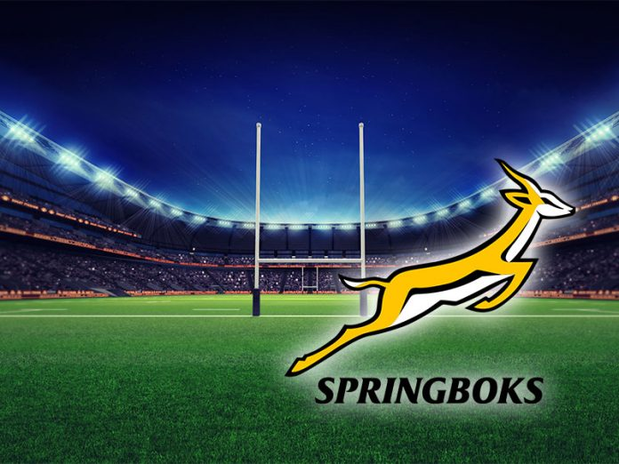 business lessons from the Springboks